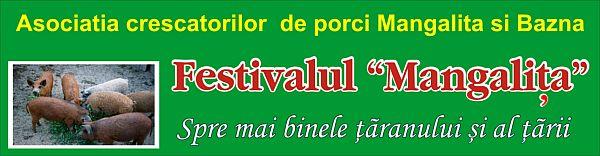 BANNER FESTIVAL 2016 CLUJ